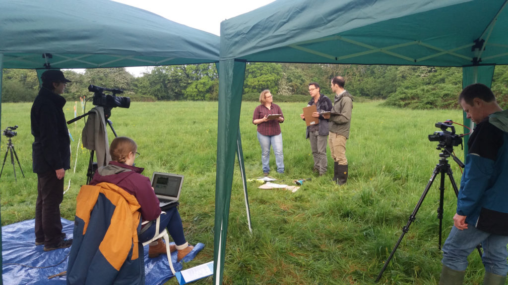 Image of team in a field, being filmed